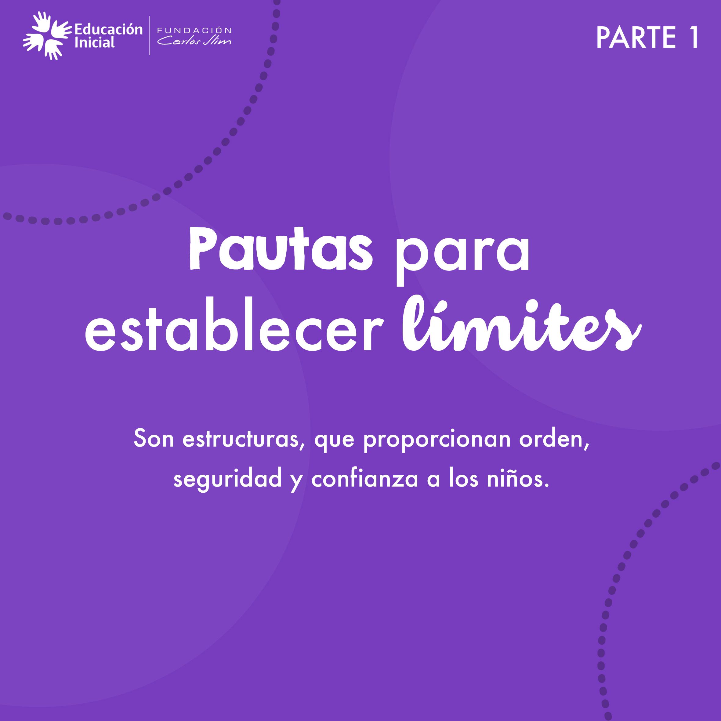 Pautas para establecer límites 1.1