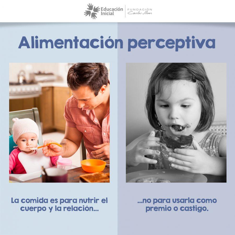 Alimentacion perceptiva